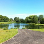 Sutton Springs Trout Fishery Lake 2