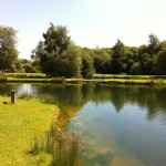 Sutton Springs Trout Fishery Lake 2 0