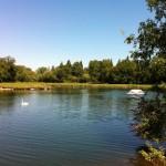 Testwood Lake