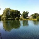 Testwood Trout Farm Lake